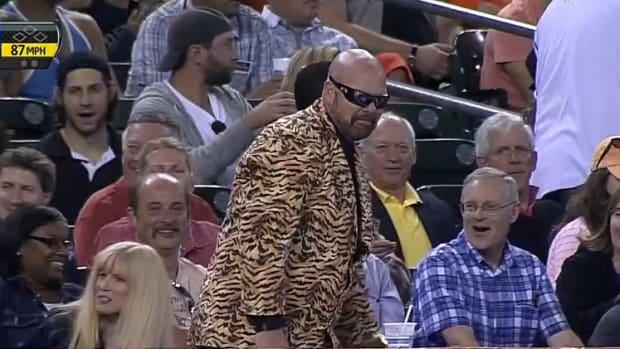 Crazy baseball fan