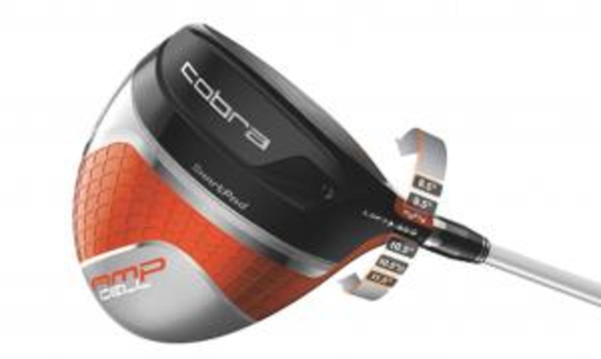 AMP-Cell-MyFly-Blog-driver.jpg
