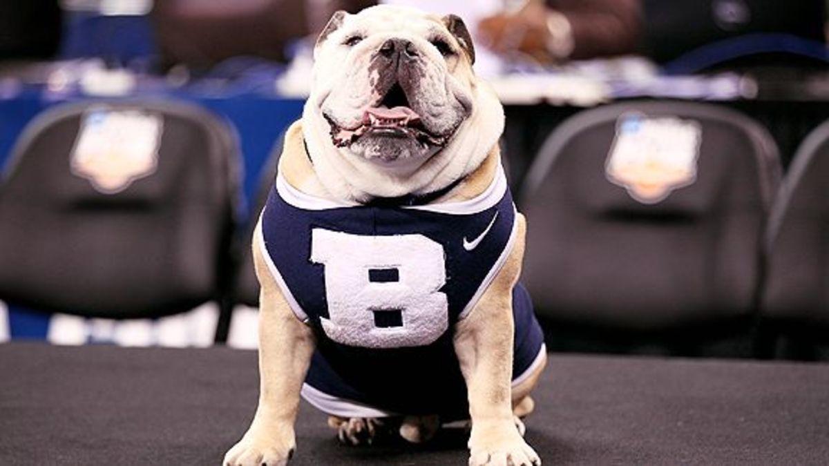 ButlerBulldog.jpg