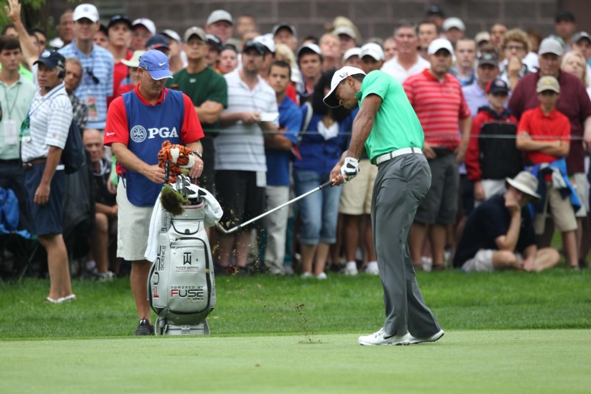 Woods Tiger1182.jpg